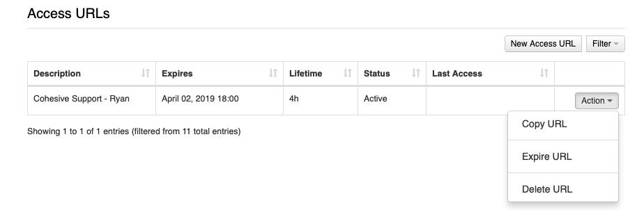 URL Action options UI image