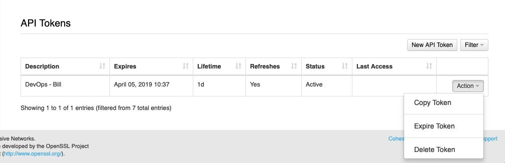 API Token Options UI Image
