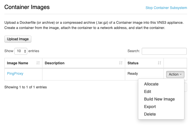 Allocating a Container from the Image