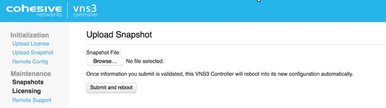VNS3 Admin Import Snapshot UI