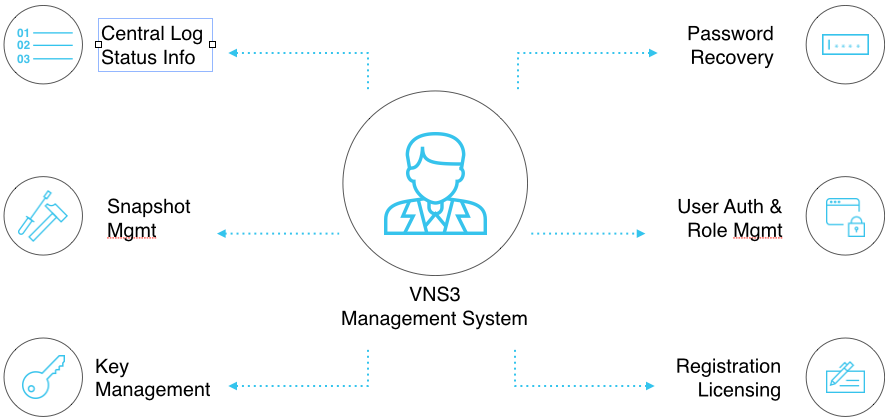 VNS3 MS Overview Image