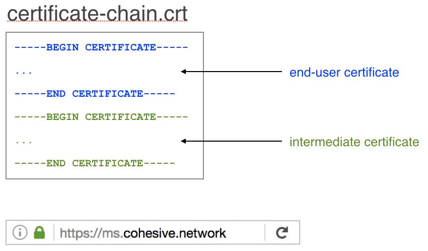 VNS3 MS Admin SSL Cert Chain Image