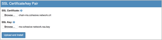 VNS3 MS Admin SSL Cert UI Image