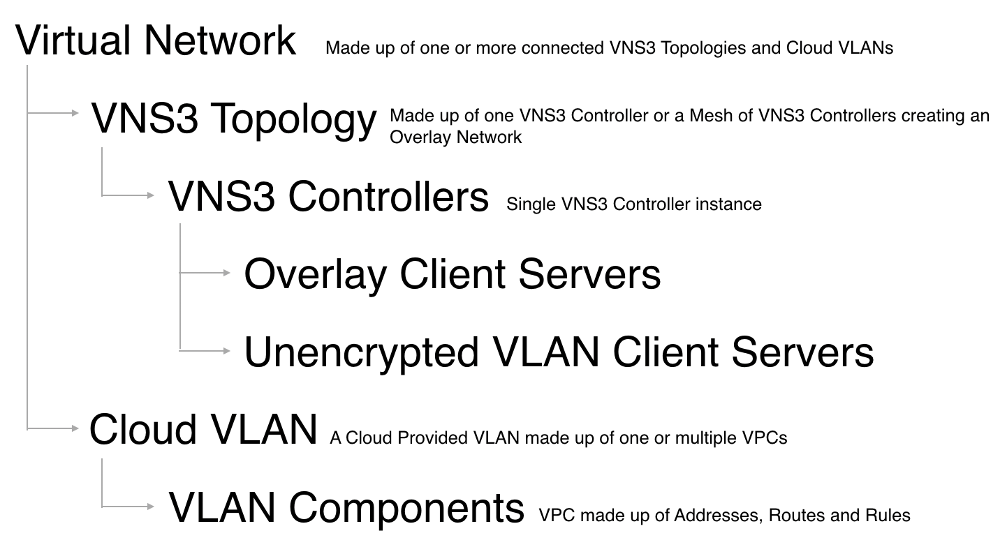 VNS3 MS Taxonomy Image