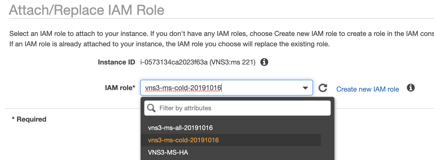 VNS3 MS Attach Role to VNS:ms instance